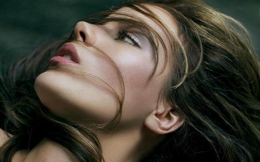 Обои Kate Beckinsale / Кейт Бекинсейл