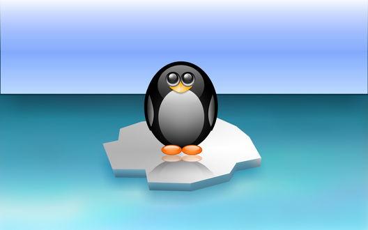 Обои Смешной пингвинёнок на льдине