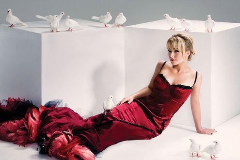 Обои Хайден Панеттьери в красном платье лежит у двух белых кубов с голубями
