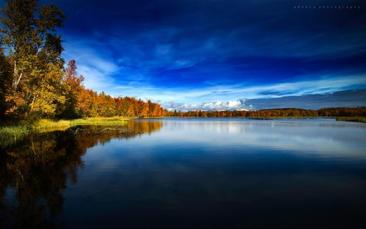 Обои Голубая вода под голубыми небесами, золотые краски осени по её берегам