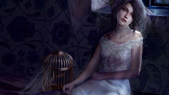 Обои Девушка в свадебном платье сидит рядом с пустой клеткой, все вокруг заросло паутиной