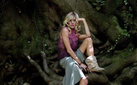 Обои Сиена Миллер сидит на корнях огромного дерева в лесу