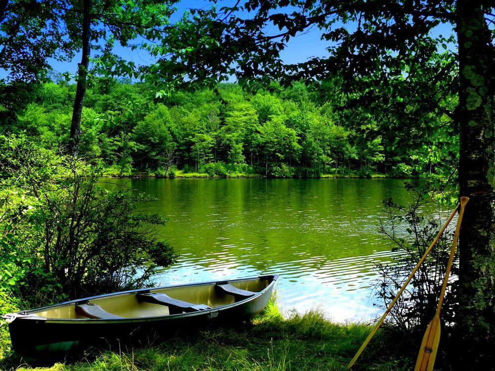 на воде лодка на траве