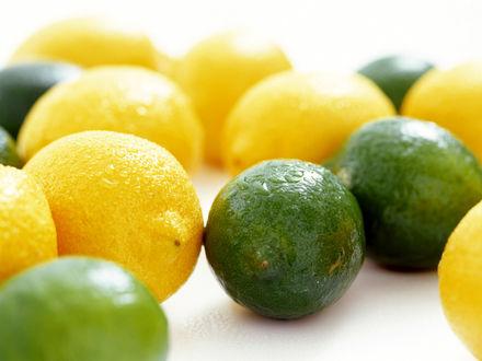Обои Лимоны и лаймы