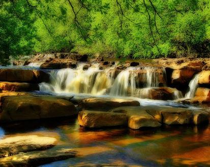 Обои Ручей в лесу протекает через камни