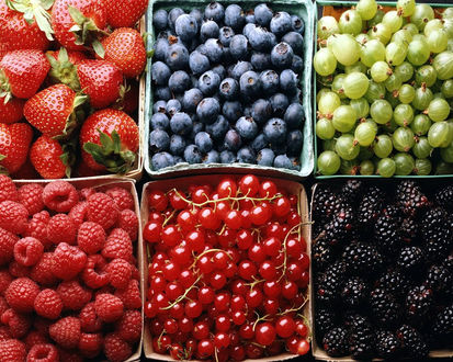 Обои Ассорти из свежих ягод