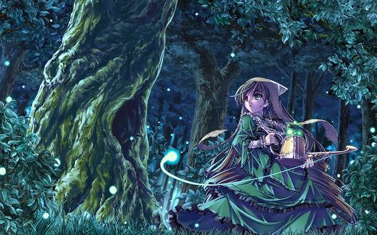 Обои Suiseiseki из аниме 'Rozen Maiden' с волшебной лейкой в лесу