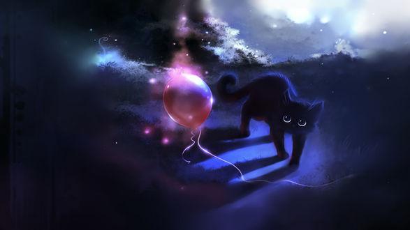 Обои Чёрный котёнок и воздушный шарик