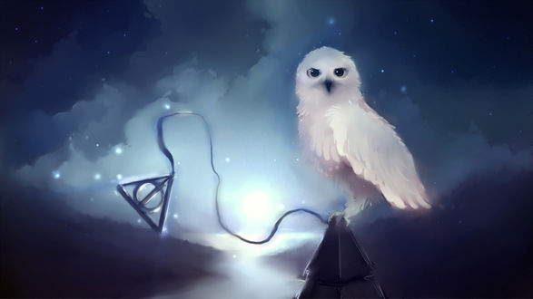 Обои Белая сова и символ даров смерти