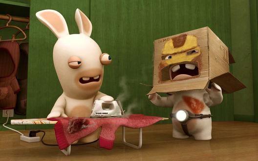 Обои Два бешеных кролика: один гладит свитер, другой с коробкой на голове дурачится (Iron woman)