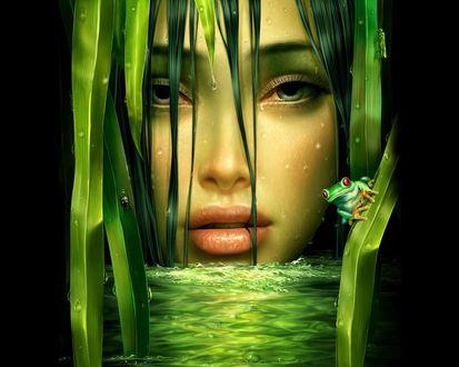 Обои Лицо богини воды, рядом её служка - прикольная лягушка
