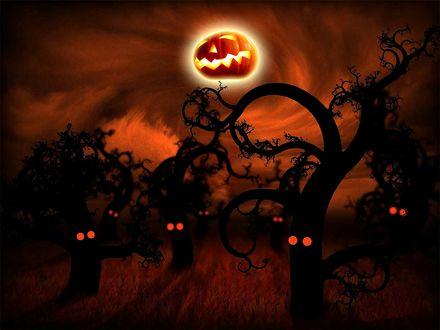 Обои Зависший в небе среди темного леса тыквенный светильник Джека в Хэллоуин / Halloween