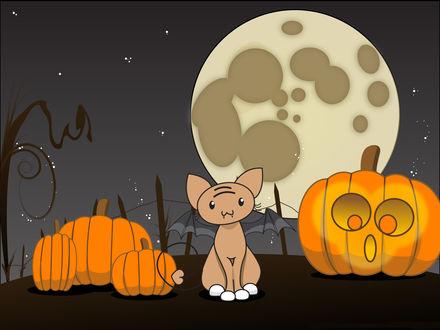Обои Ночь, полная луна, светильник Джека и кот, похожий на летучую мышь