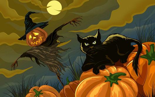 Обои Ночь на Хеллоуин- чучело, луна, чёрный кот и тыквы