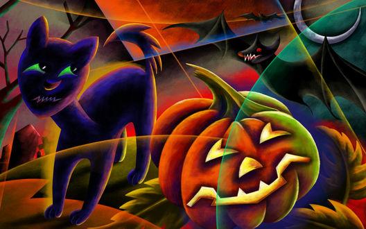 Обои Кот, летучие мыши, светильник Джека-всё, что полагается в праздник Хеллоуина