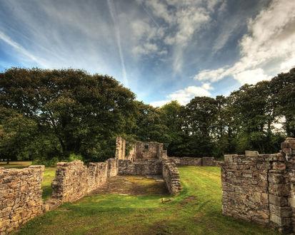 Обои Останки каменных руин от старого здания в поле рядом с деревьями Basingwerk Abbey - North Wales - UK /  Аббатство Басингверк - Северный Уэльс - Великобритания