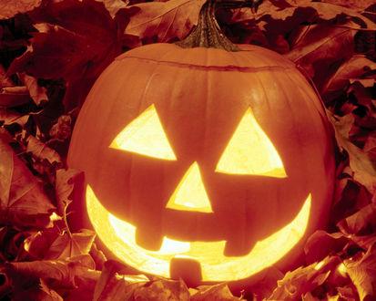 Обои Светильник Джека в осенних листьях в Хэллоуин / Haloween