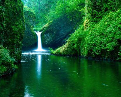 Обои Маленький лесной водопад