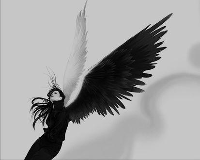 Обои Готичная девушка-ангел с белым и черным крылом