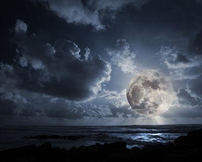 Обои Большое полнолуние ночью у моря