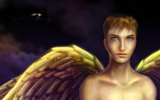 Обои Голубоглазый ангел на фоне ночного неба