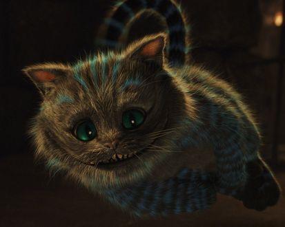 Обои Чеширский кот мило улыбается