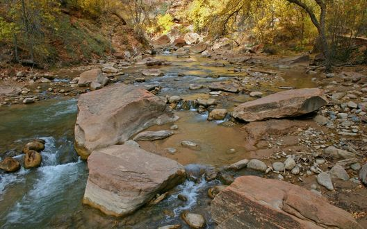 Обои Ручей течёт через лес и камни