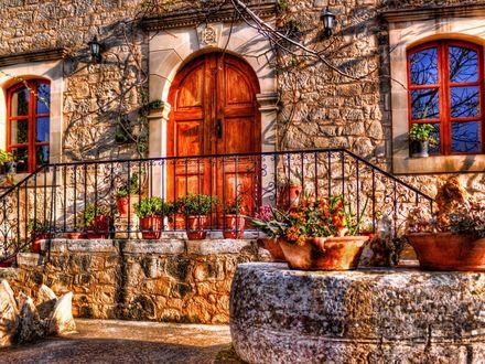 Обои Солнечный дворик, уставленный цветами