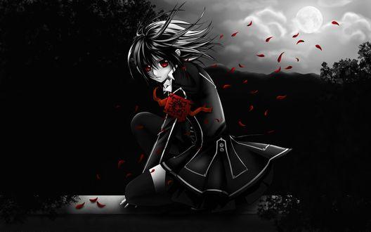 Обои Юки Кросс из аниме 'Рыцарь-Вампир / Vampire Knight' с красными глазами, сидящая на ограде в сумерках, и красные лепестки