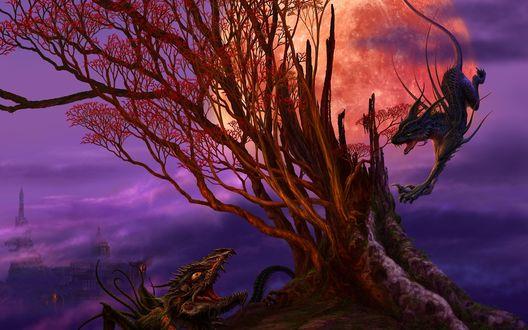 Обои Ucchiey (Kazamasa Uchio): Два дракона а фоне большой луны и дерева нападают друг на друга