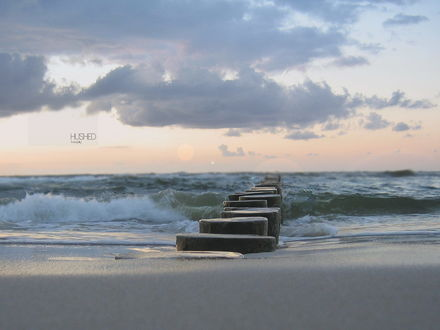Обои Вбитые деревянные столбики волнореза уходят далеко в море (HUSHED Tropicaly)