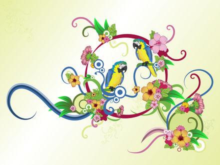 Обои Два попугая и цветы