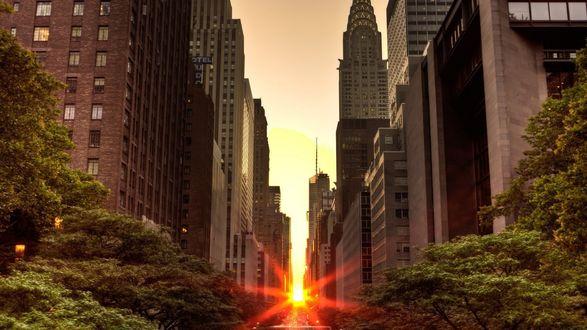 Обои Закат среди небоскребов на улице Нью Йорка