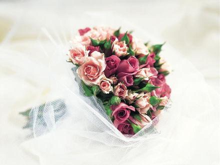 Обои Букет из розовых цветов разных оттенков