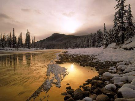 Обои Таёжная река несёт свои быстрые воды мимо сопок и деревьев