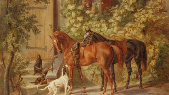 Обои Пара чистокровных лошадей с охотничьими собаками стоят у дома разглядывая подстреленных фазанов