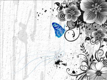 Обои Узоры из цветов и синяя бабочка