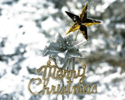 Обои Новогоднее украшение с надписью Merry Christmas и золотой звездой