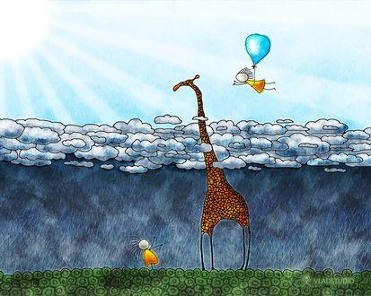 Обои Очень длинная шея жирафа позволяет ему держать голову выше туч и проливного дождя