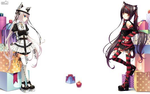 Обои Vanilla & Chocolla из манги 'Кошачий рай / Neko Paradise' стоят возле упаковок с подарками (Sayori Neko Works)