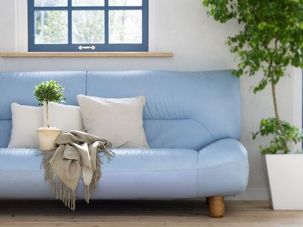 Обои Голубой диван под окном  в гостиной с декоративными деревьями