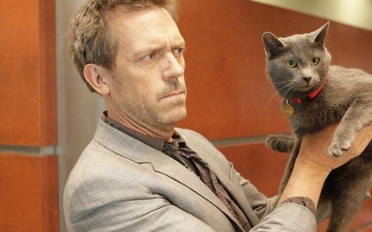 Обои Доктор Грегори Хаус / House M.D. (актре Хью Лори / Hugh Laurie) с серым котом в руках