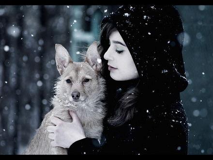 Обои Девушка с собакой под снегом