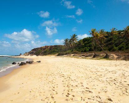 Обои Побережье у берегов Прайя да Пипа в Бразилии / Praia da Pipa,Brazil