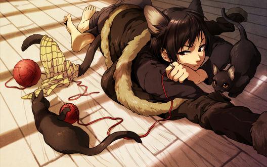 Обои Неко-Изая из аниме Durarara лёжа на полу играет с кошками