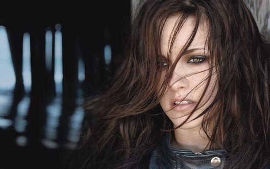Обои Портрет Кристен Стюарт / Kristen Stewart с волосами падающими на лицо, в кожаной куртке
