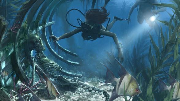 Обои Девушки изучают морские глубины