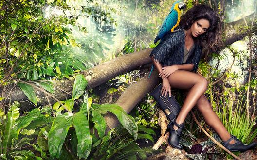 Обои Бразильская модель Эммануэла де Паула / Emanuela de Paula сидит на дереве в тропиках, на плече у нее попугай, в руках клатч