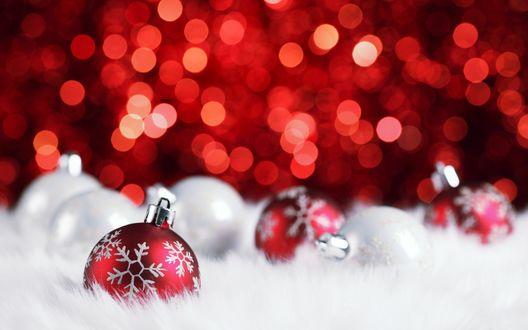 Эротические новогодние обои на рабочий стол, минет от незнакомки смотреть