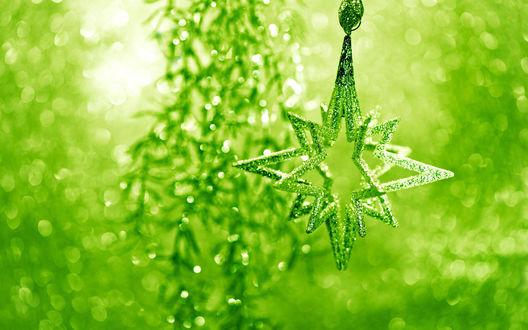 Обои Новогоднее украшение в зеленом свете
